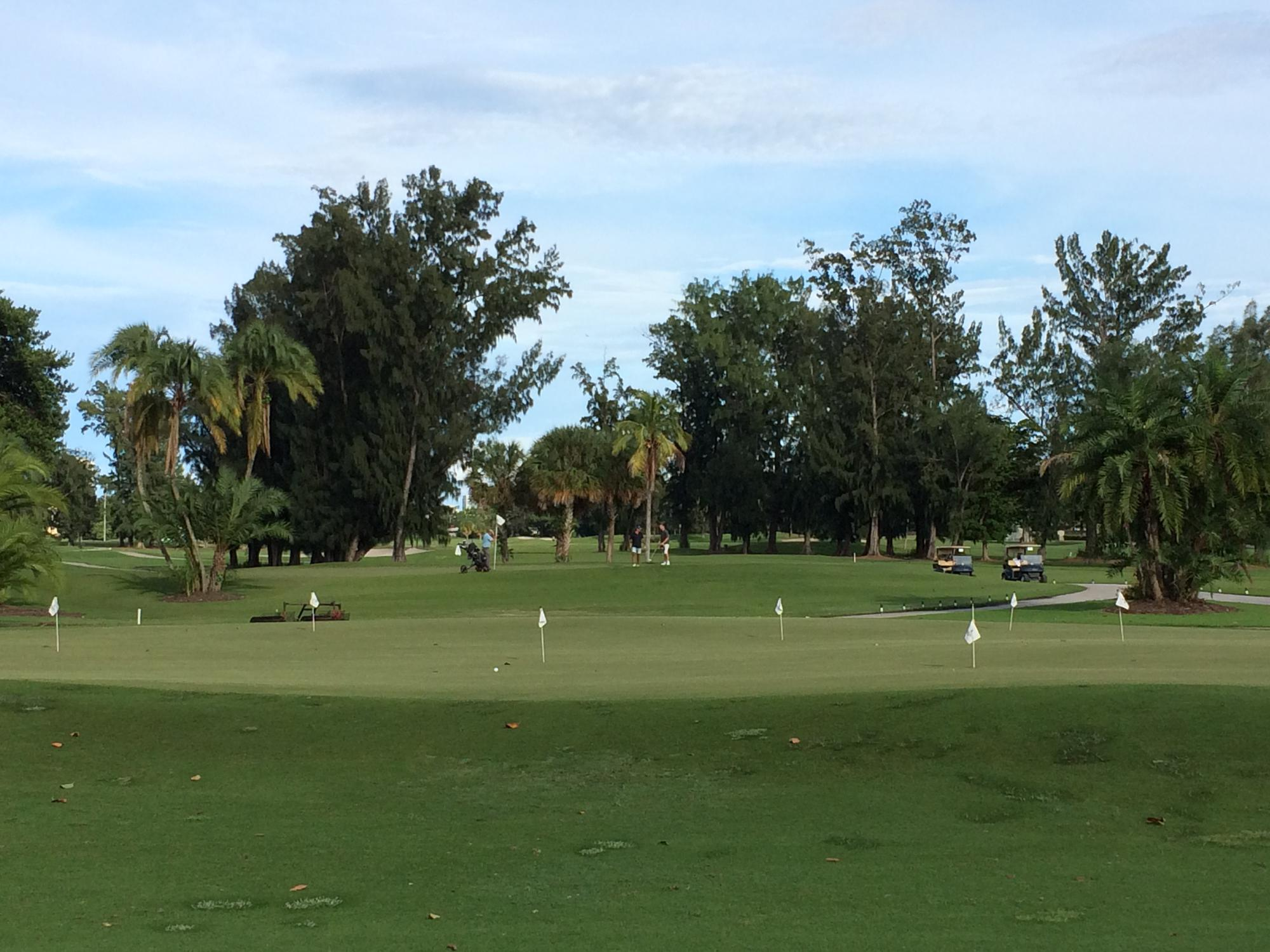 GOLFING OPTIONS ON MIAMI BEACH